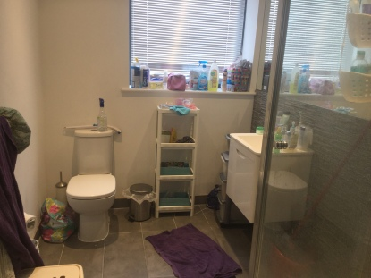32. Final flat bathroom move in 1