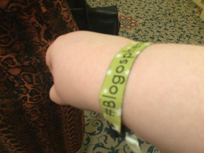 Blogosphere 18 wristband