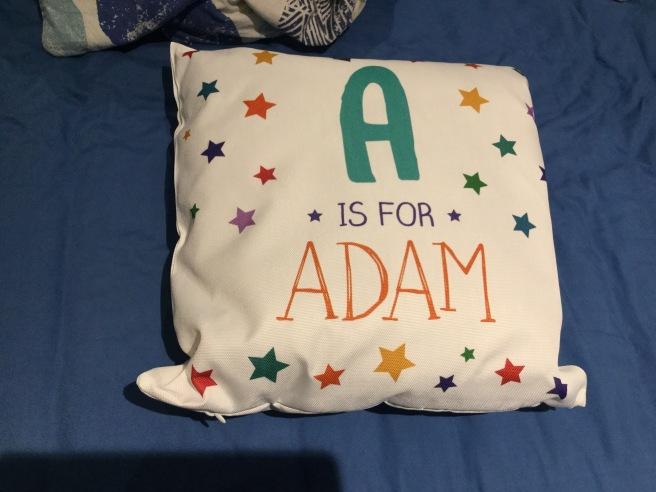adams-cushion