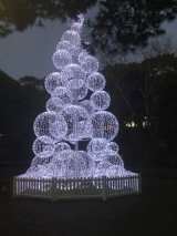 bctw bauble tree