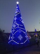 bctw blue tree